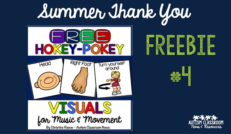 Free Visual Supports for the Hokey Pokey: Summer Thank You #4