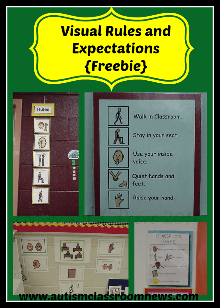 Visual Rules And Expectations Freebie Autism Classroom Resources