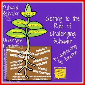 getting-to-the-root-of-challenging-behavior