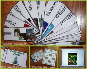 Science in the Special Education Classroom-Plant Life Cycle Activities for presenting information.